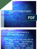 04periodoembrionario1