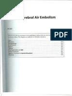 Chp 11 Cerebral Air Embolism