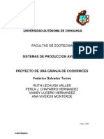 Codorniz-sistemas de Produccion