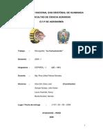Monografia Español