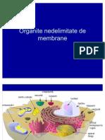 Organite Nedelimitate de Membrane Part 1