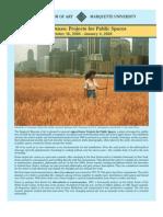 Agnes Denes - Projecting Public Space - Guide