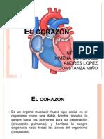 EL_CORAZON