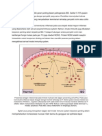 patofis IBD