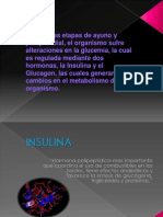 Insulina-glucagon