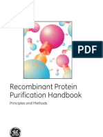 ant Protein Purification