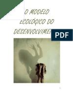 O MODELO ECOLÓGICO DO DESENVOLVIMENTO