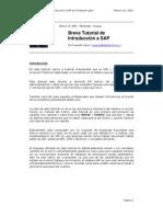 Breve Tutorial de Introduccion a SAP