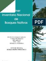 Invent a Rio de Bosque Nativo Nacion