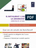 EL BATXILLERAT I L'ACCÉS A LA UNIVERSITAT_011
