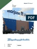 57587370 Rapport de Stage a l Hyper Marche Marjane