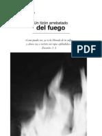 Tizon Arrebatado Del Fuego