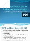 Dorney - Dam Removal and NC DWQ