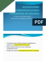 Alteraciones Cardiovasculares Cong+Enitas en Equinos