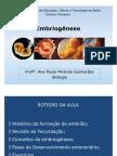 Embriogênese IFBA