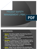 Project Safety Management ( Psm )_150510