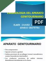 55232903-SEMANA-08-GENITOURINARIO-TEORIA