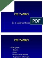 Pie Zambo Ppt Share)