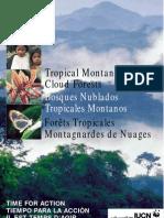 bosques nublados_IUCN