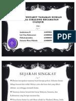 Pengamatan Penyakit perkebunan Durian. IPB.