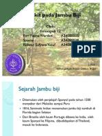 Pengamatan penyakit penting Jambu Biji. IPB.