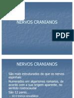 NERVOS_CRANIANOS
