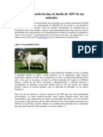 Genotipificacion Bovina, La Huella de Adn de Sus Animales