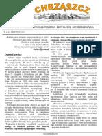 Chrząszcz - Czerwiec 2011 (nr 63)