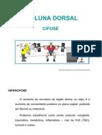 Coluna Dorsal