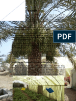 IPM Report