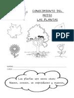 CUADERNILLO PLANTAS