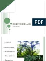 02. biodiversidade_plantas