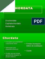 05. vertebrados