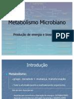 08. metabolismo