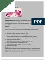 Anemia Aplastik&Defisiensi Besi