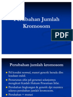 Perubahan Jumlah Kromosom Polyploidisasi