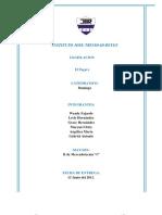 Informe II MKT 1
