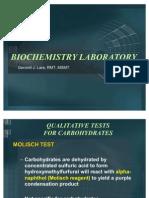 Biochemistry Postlab Finals