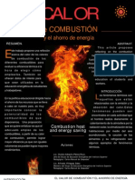 Calor de Combustion