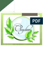 chydro-1 ppt