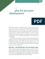 Jatropha for Pro-poor Development
