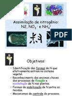Assimilação de nitrogênio