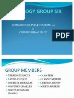 Group 6- Nervous Sytem Presentation