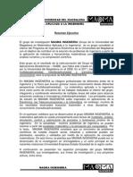 Resumen MAGMA Lineas Proyectos v1
