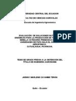 AEROPONÍA EN ECUADOR ING. AGR. JHENNY CAYAMBE
