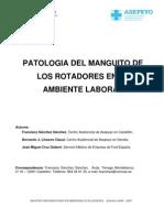 PATOLOGIA MANGUITO ROTADORES