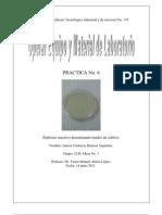 Practica No. 6 -Elaborar reactivo denominado medio de cultivo.