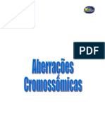 Aberracoes cromossomicas