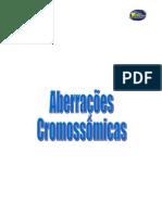 Aberracoes cromossomicas