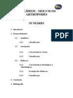 Anelideos Molusculos E Artropodes